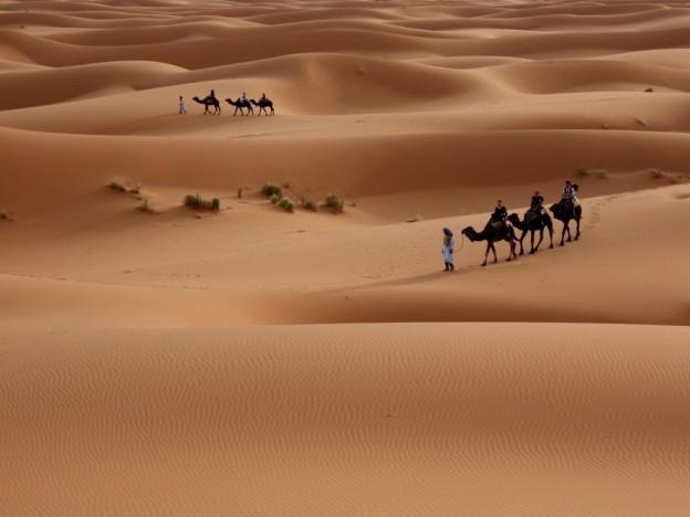 Nature_Desert_Walking_through_the_desert_030073_